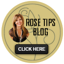 Rose Tips - Interior Design Tips